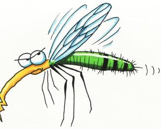 Zeg maar dag tegen muggen met byebites